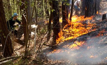 FOTO: Pri Rajeckých Tepliciach horí les, hasiči zasahujú v strmom teréne