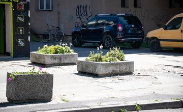 FOTO: Betónové kvetináče v centre Žiliny skrášlili vysadením trvaliek a trávy