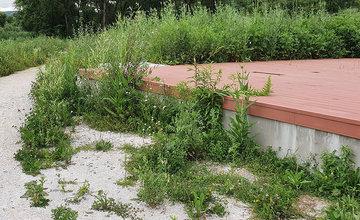 FOTO: Vysoká tráva a poškodené časti v Parku sv. Juraja v Trnovom