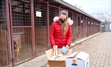 FOTO: Darovanie vreciek na exkrementy útulku Žilina
