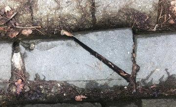 FOTO: Neporiadok na Novom cintoríne v Žiline