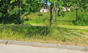 FOTO: Na sídlisku Vlčince a v mestskej časti Rosinky zostali nedokosené plochy