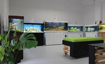 FOTO: Najväčšia predajňa akvaristiky na Slovensku Shrimp.sk v Žiline