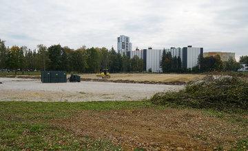 FOTO: Pri revitalizácii atletického areálu univerzity odstránili stromoradie s brezami