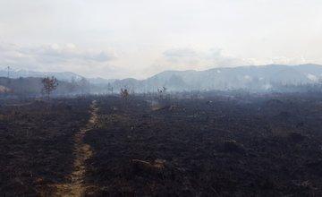 Požiar lesa v Trnovom 25.3.2015