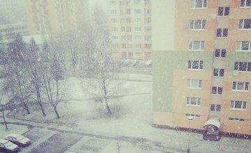 Príchod zimy 12.2.2014