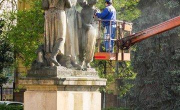 Ranná očista v Parku Slovenského národného povstania
