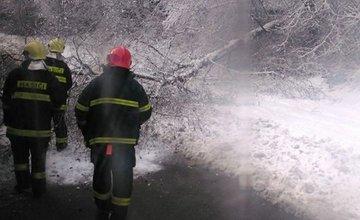 V noci padali stromy na cestu na viacerých miestach v Žiline