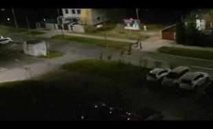 VIDEO: Na sídlisko Hájik prichádzajú v nočných hodinách stáda srniek aj diviaky